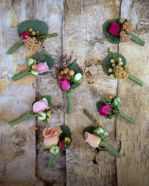 Flower Friday – Week 2