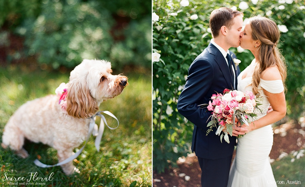 Puppy Collar Nantucket Wedding First Look Clayton Austin3