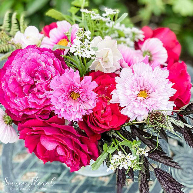 hot pink garden roses cosmos